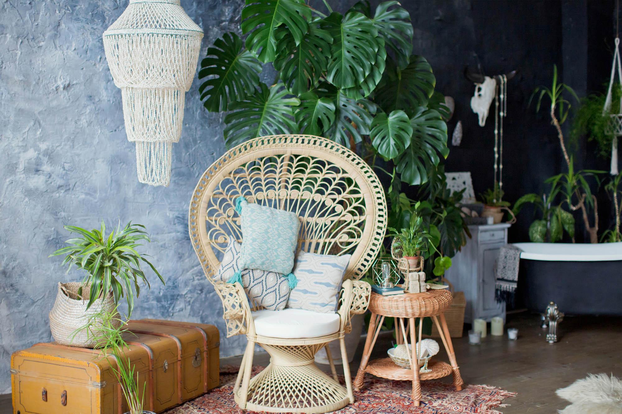 Vaso decorativo: veja 7 dicas de como escolher e usar na sua casa